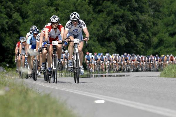 Das Fahrerfeld der Tour-Transalp auf dem Weg zum Endziel Bibione.  Foto: Veranstalter