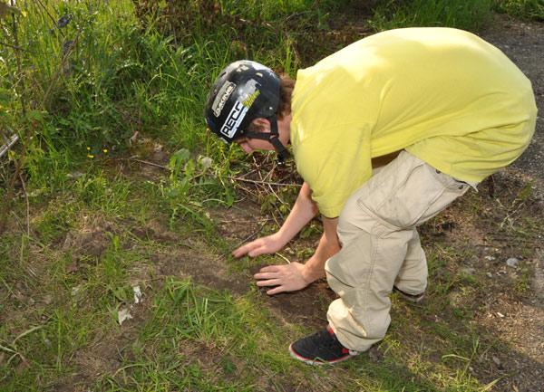 Simon Buchs (17, Thun) beweist grünen Daumen und setzt eine Pflanze.  Foto: Michael Brönnimann / Burning Wheels Tour