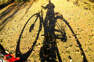 Fahrradfahrer.  Foto: uschi dreiucker  / pixelio.de